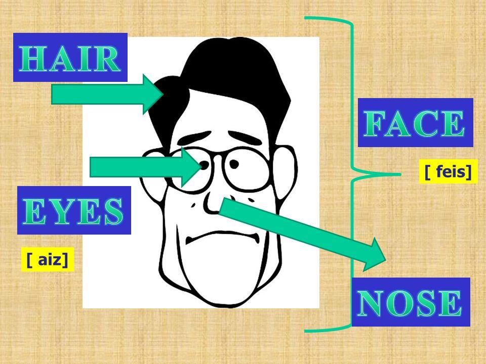 HAIR FACE [ feis] EYES [ aiz] NOSE